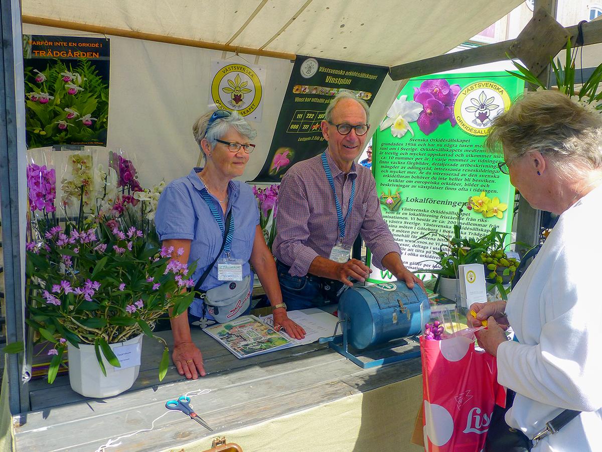 Margareta och Anders Jonsson bemannar VSOS monter. Även om den väldoftande Dendrobium kingianum tilldrog sig uppmärksamhet så var det lotterna de flesta frågade efter.